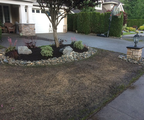 New Lawn Installation In Kent Federal Way Des Moines Wa